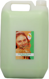 Indrani Green Apple Shampoo With Conditioner 1litre