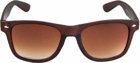 Ivy Vacker UV Protected Brown Wayfarer Sunglasses For Men
