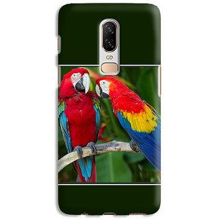 PrintVisa Animal Bird Multi Color Parrot Mitthu Popat Designer Printed Hard Back Case Cover For One Plus 6 - Multicolor