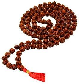 Rudraksha Beads Mala Lab certified & Original Shiv power beads mala for men & women By CEYLONMINE