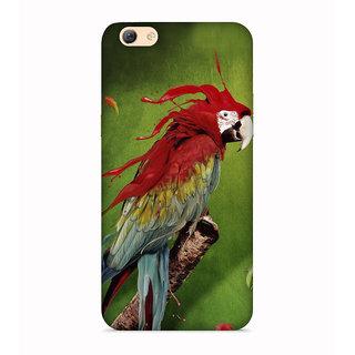 PrintVisa Parrrots Tota Myna Flowers Ful Designer Printed Hard Back Case For Vivo Y69 - Multicolor