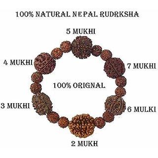 Nepali Rudraksha Rudraksh Beads Bracelet for Men and Women By REBUY