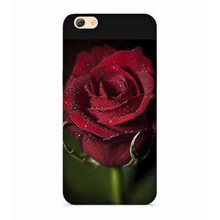 Printvisa Rose Flowers Floral Ful Red Gulaab Aroma Smell Designer Printed Hard Back Case For Vivo V5 - Multicolor