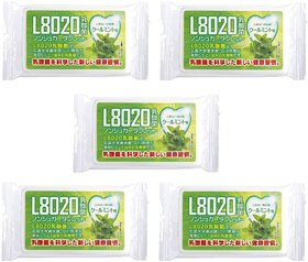 Doshisha L8020 Anti Bacteria Dental Care Tablets, Mint Flavor, Made in Japan, Pack of 5, 9gms Each