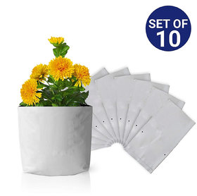 Grow bag for home gardening High Quality 150 Micron/600 Gauge  Pack of 10 Bags Size 40 x 24 x 24 cm