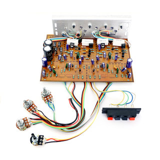 Barry John 250W 3055 Powerful Transistor Audio Amplifier Board for DIY Electronic Components Electronic Hobby Kit
