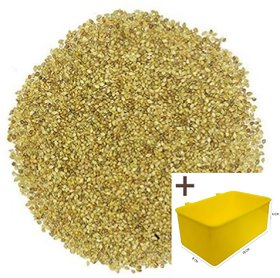 Rayyans (990 grams)High Quality Small Millet (Samai) Seeds for pet birds budgies parrots finches cocktails Mac caw etc