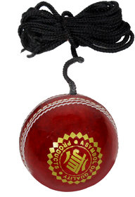 JTM practice knocking hanging cricket ball
