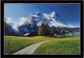 Switzerlant Mountains Wall Sticker Poster Big Without Frame (2.50 X 5 Feet) Home Art Dcor