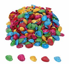 Multicolored Sea Shell Shankh, 450 Gm (1500 Pcs),Used in Aquariums, Art  Crafts, Decorations, Table Decoration, Size 1