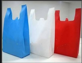 Style UR Home - Non woven Carry Bag, Shopping Bag, Reusable Bag,Grocery Bag (16 X 20) - Pack of 50