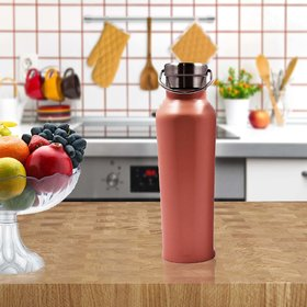Stainlesss Steel Plain Design Vacuum Water Bottle - 500ml (106-A)