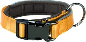 Trixie Experience Extra Wide Dog Collars (ML 3750 cm/30 mm, Yellow)