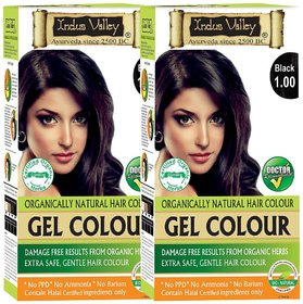 Indus Valley Bio Organic Natural Gel Black 1.00 Hair Color One Touch Pack Pack of 2 Each Pack 35 G