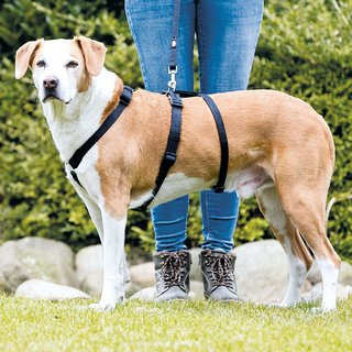 Trixie Stay Harness for Dogs (LXL - 75100 cm/25 mm) - Eg. Labrador
