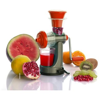 Icon Nano Fruits & Vegetable Juicer With Steel Handle (Assorted Color)