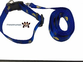 1/2 Inch Printed Collar Leash (Color Blue)
