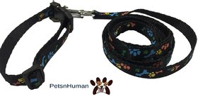 1/2 Inch Printed Collar Leash (Color Black)