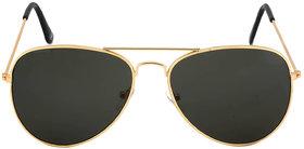 Adam Jones Gold  Black UV Protected Aviator Sunglasses