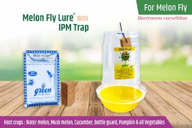 IPM Pheromone Trap with Melon Fly Pheromone Lure For controlling all Bactrocera Cucurbitae pack of 10 for 1 Acre