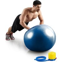 Carpoint 75cm Multicolor Gym Exercise Ball for Fitness,