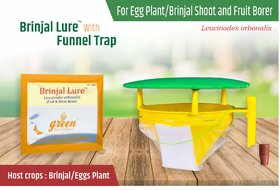 Funnel Pheromone Trap with Brinjal Pheromone Lure (Leucinodes orbonalis) Brinjal shoot  fruit borer pack of 10