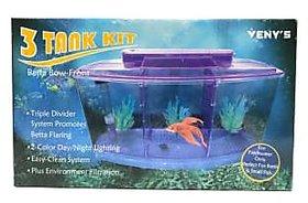 VENY'S Triple Betta tank  Triple Divider Rectangle Aquarium Tank  (2 L)