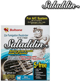 Saladdin (Fumigation Deodorizer) For Car Air Conditioning system- Mint