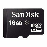 SanDisk 16 GB Class 4 Micro SDHC Memory Card