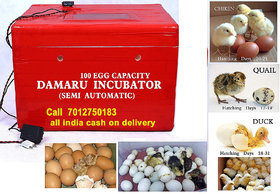 DAMARU 100 Egg Capacity Semi Automatic Thermocol Incubator/Chicken Ducks, Pigeons Quail Hatchery Machine for Eggs