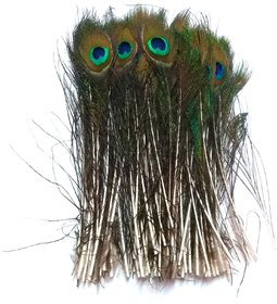 Peacock Mor Pankh Feather Tails (Pack of 20). Size - 22/5 cm