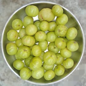 Gooseberry Seeds - 20 Seeds Only