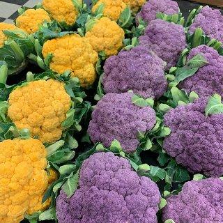Mix Cauliflower Vegetable F1 Hybrid Seeds - 50 Seeds Pack