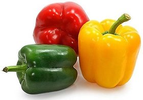 SM Capsicum F1 Hybrid Yellow and Capsicum F1 Hybrid  Red Combo Seeds