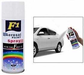 Turtuls group F1 spray paint white