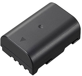Panasonic DMW-BLF19 Rechargeable Lithium-ion Battery