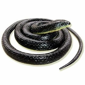 SATLOK RUBBER SNAKE REALISTIC FAKE SNAKE GAG TOY SNAKE TOY FOR KIDS (MULTI COLOR)