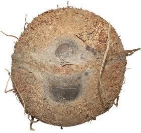 Ekakshi Nariyal One Eye One Mouth Coconut Natural