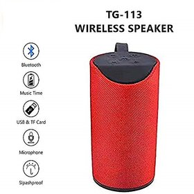 TG 113 Wireless Portable Bluetooth Speaker by Raptech (Assorted Color)