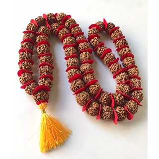 Rudraksha Mala 54+1 Beads (20 mm with red valvet ) By Royallewind