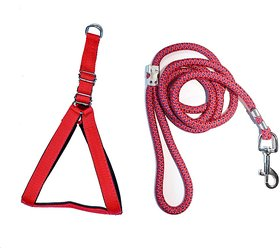 Tame Love Padded Harness and Leash for Puppy of All Breeds (Red Color - 0.75 inches)
