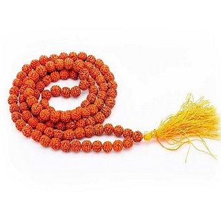 Lab certified rudraksha beads maala natural shiv moksha beads mala by Ceylonmine