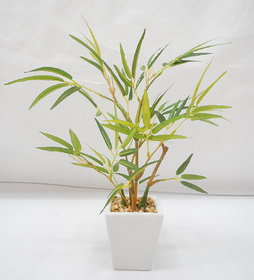 Elen  natural looking artificial Bamboo Bonsai Plant  with ceramic Pot (26cm)