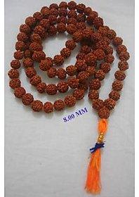 8 MM 5 MUKHI RUDRAKSHA JAPA MALA HINDU PRAYER JAPA MALA RUDRAKSHA BEADED MAALA 108+1