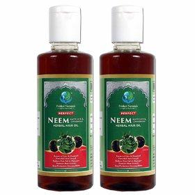 Prithvi Naturals Perfect Neem - Anti Lice  Dandruff Herbal Hair Oil For Both Men  Women, Best Combo Neem Anti Lice