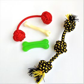 THE PAWXI - PUPPY Small Dog Bones and Small Rope Toys for PUPPY Dogs for Activity