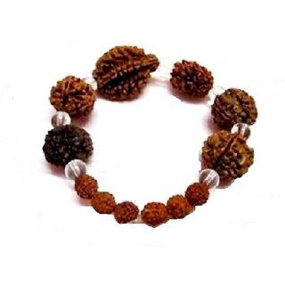 Jewelswonder Rudraksha Bracelet For Unisex 100 original (Lab Certified)