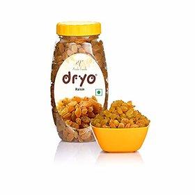 Dryo Natural Golden Brown Raisins/Kishmish Plastic Jar 250G
