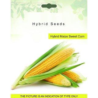 Dioart Corn Seeds-110