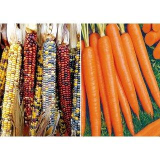 Dioart Corn Seeds-935